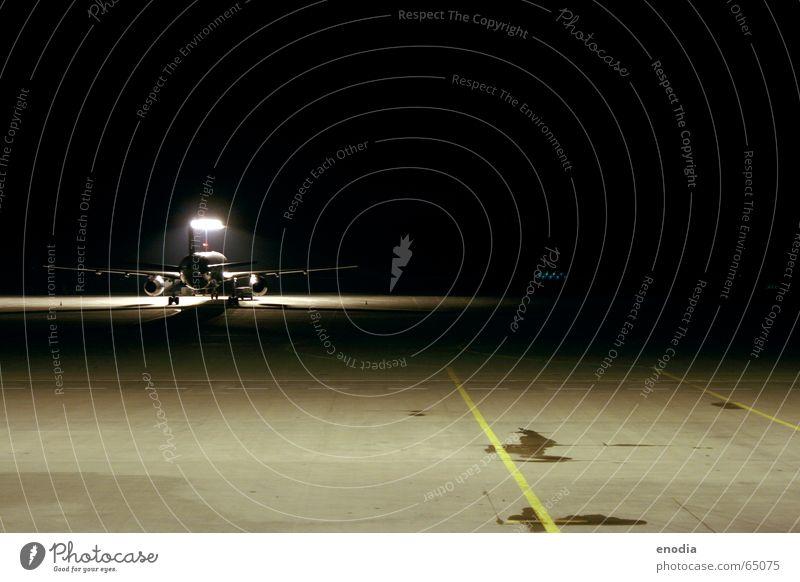 Condor Flugzeug Asphalt Nacht Licht Flughafen Landebahn