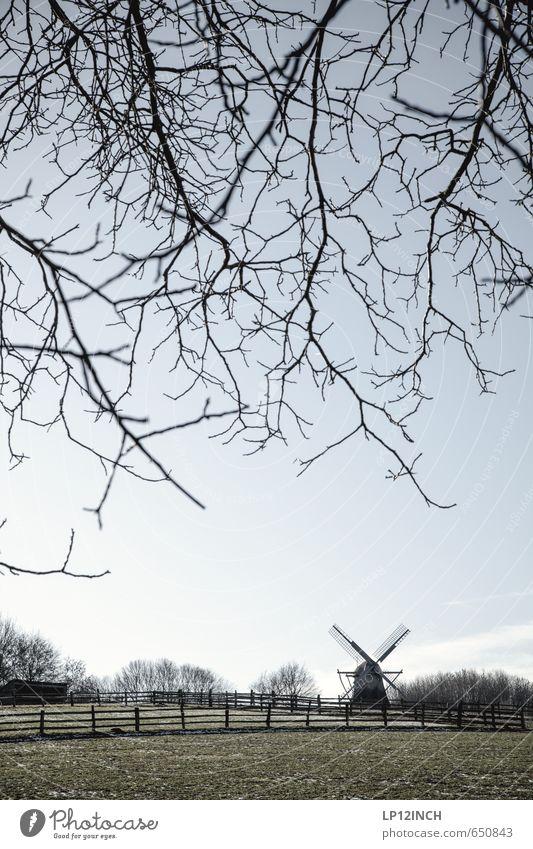 Feierabend wie das duftet Natur Ferien & Urlaub & Reisen Baum Einsamkeit Landschaft ruhig Winter Umwelt Wiese Wege & Pfade Feld Idylle Ausflug Ast
