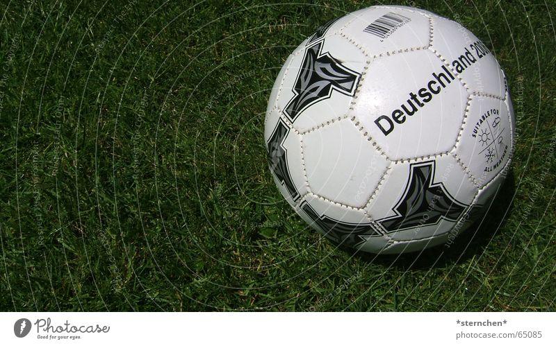 Fertig zum Abschuss! rund weiß schwarz grün Fußball Ball Rasen liegen 1 Textfreiraum links Deutschland nah Menschenleer Farbfoto