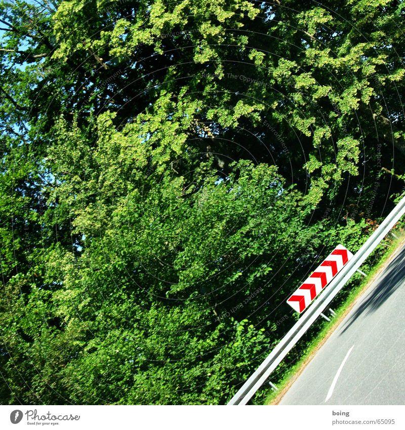 die Kurve kriegen Wegbiegung Pfeil aufwärts rechts Wald abwärts Sturz Ferien & Urlaub & Reisen gefährlich Verkehrswege Sportveranstaltung Konkurrenz Warnhinweis