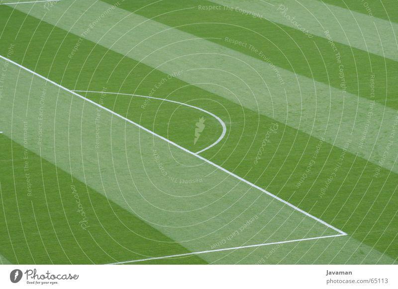 Frisch geschnitten Fußball Platz Rasen König Fußballplatz Weltmeisterschaft Sport WM 2006