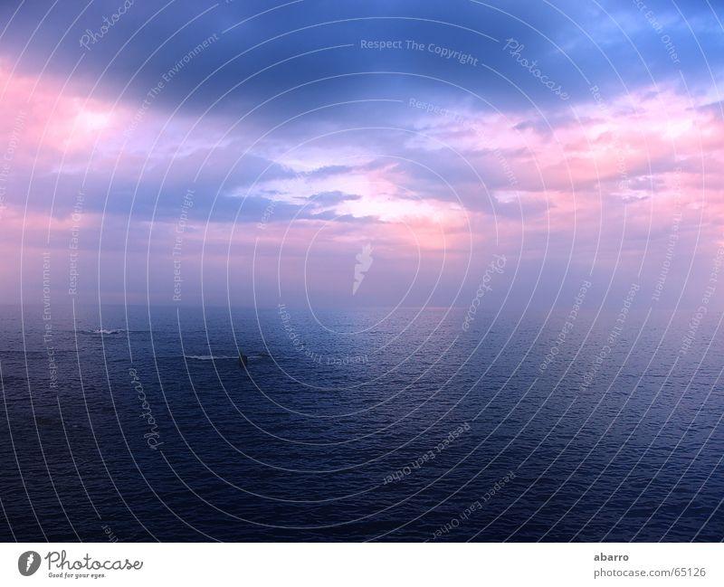 sunset near the sea Himmel Strand Religion & Glaube Frieden