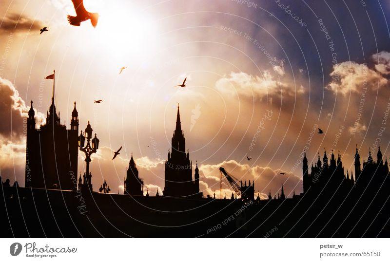London Vogel Himmel Wolken Stadt Brücke Ferien & Urlaub & Reisen Großbritannien Europa Romantik Gebäude Sonnenaufgang Sonnenuntergang Hauptstadt Big Ben