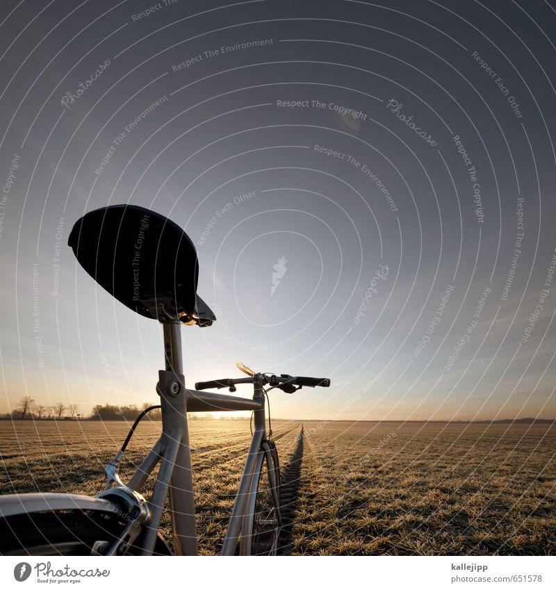 sternfahrer Lifestyle Freizeit & Hobby Sport Fitness Sport-Training Fahrradfahren Bewegung Feld Wege & Pfade Sattel retro Aluminium Ferien & Urlaub & Reisen