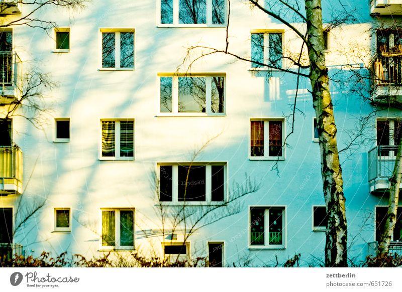 Fassade Natur Stadt Sonne Haus Fenster Frühling Berlin Häusliches Leben Wohnhaus Etage Wohnhochhaus Block Plattenbau Wohngebiet Vorstadt