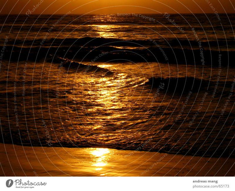 Flüssiges Gold Meer Wellen Strand Reflexion & Spiegelung ruhig schön beruhigend Ferne sea ocean Wasser water wave waves Sonne sun gold strasse straße road