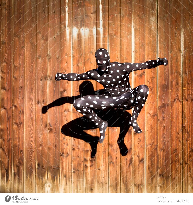 Jumping Jack Frog Mensch Jugendliche Freude 18-30 Jahre Erwachsene Stil Kunst springen maskulin elegant Kraft Körper Tanzen ästhetisch sportlich Leidenschaft
