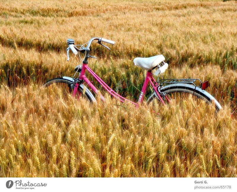 Ein Babe im Kornfeld Fahrrad rosa weiß Fahrradreifen Feld Reifenspuren Pause Erholung stoppen Fahrradtour Schneise Landwirtschaft Zerealien Weizen Weizenfeld
