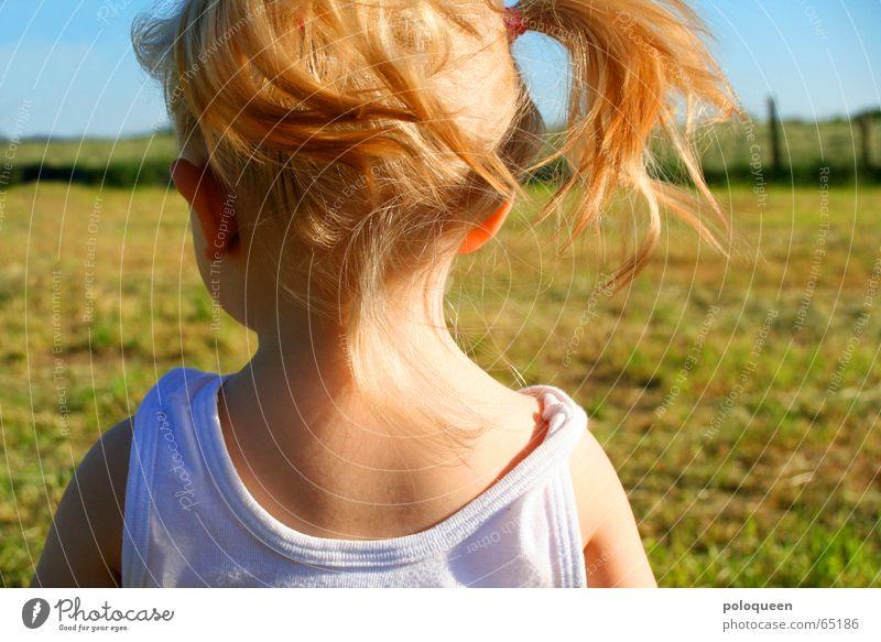 luna Mädchen Kind blond Zopf Sommer Wiese Spielen Wind Physik Nacken Kleinkind Sonne Wärme Rücken Kopf