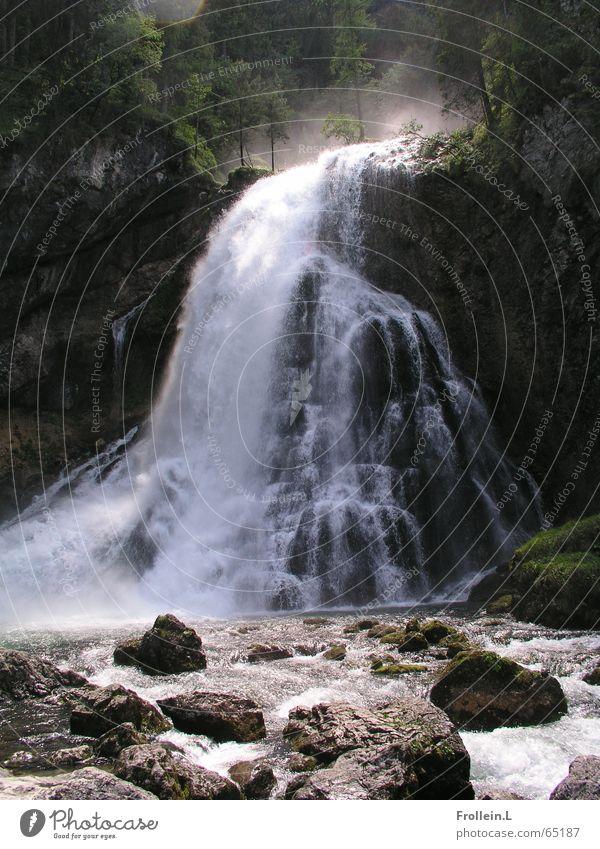 Um Salzburg herum Natur Wasser Landschaft Felsen Wasserfall mystisch