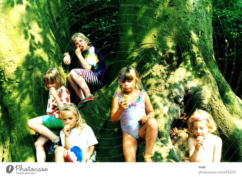 happy-go-lucky Kind Mädchen Baum Sonne grün Sommer Freude kalt Freiheit hell blond klein Essen frei Speiseeis süß