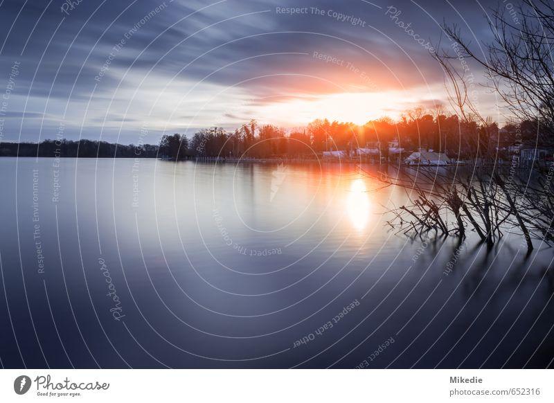 Wannsee Abend Wasser Wolken Sonne Sonnenaufgang Sonnenuntergang Sonnenlicht Schönes Wetter Baum Seeufer Flussufer Gelassenheit geduldig ruhig Havel