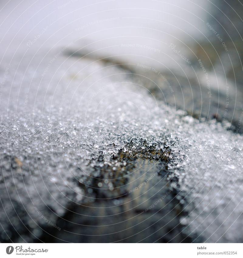 Tauwetter Winter Schnee Umwelt Natur Pflanze Urelemente Wasser Klima Eis Frost Holz frieren glänzend liegen alt dunkel kalt nass braun grau schwarz weiß ruhig