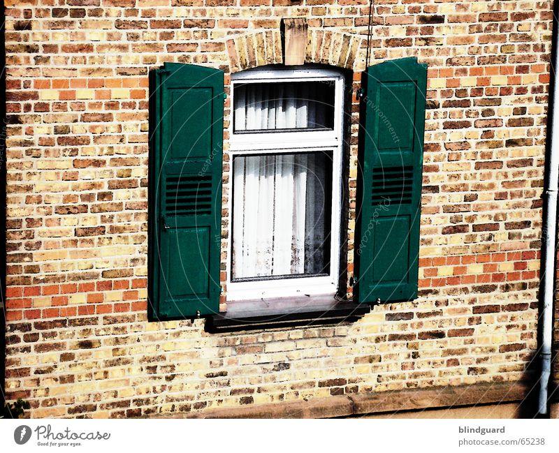 Wide Open alt grün rot Haus Wand Fenster Stein Mauer Ladengeschäft Backstein Vorhang beige Altbau Glasscheibe Fensterladen Rollladen