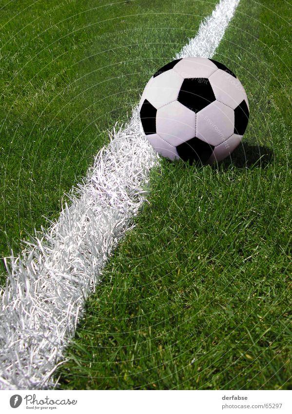 Fussball Gras Fußball Ball Tor Weltmeisterschaft treten Elfmeter