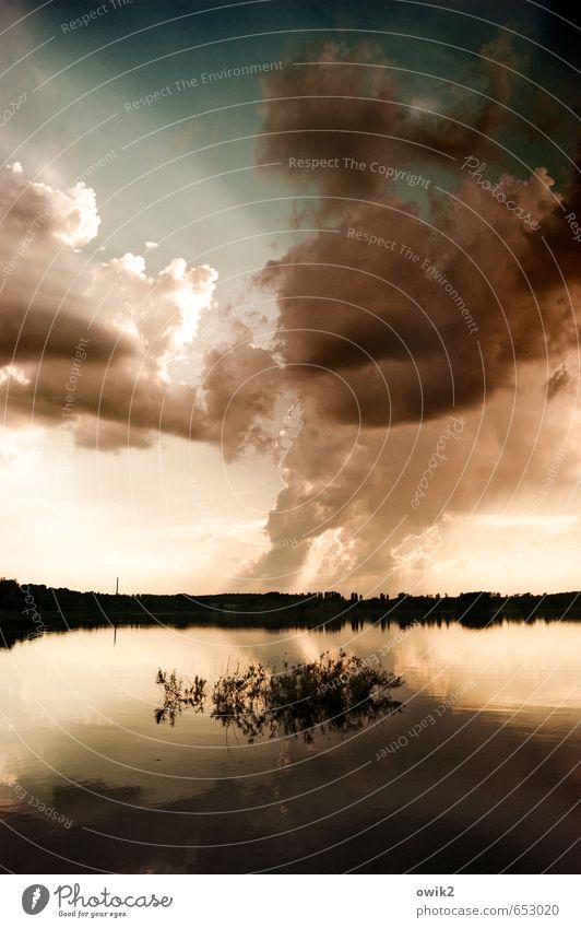 Auspuff Kohlekraftwerk Abgas Rauchwolke Schadstoff Umwelt Natur Landschaft Pflanze Wasser Himmel Wolken Horizont Klima Klimawandel Wetter Schönes Wetter