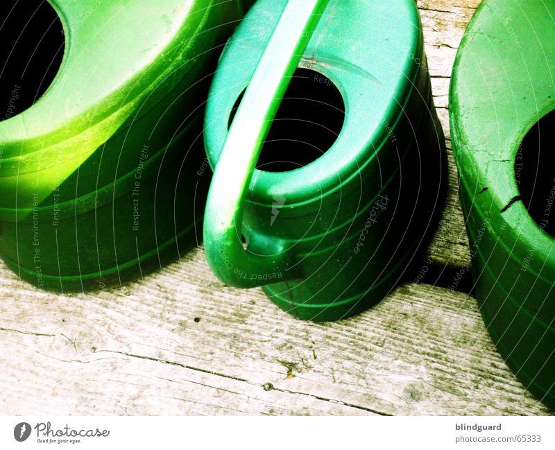 Let it rain Gießkanne grün Gärtner Holz Bewässerung gießen Dürre Sommer Grüner Daumen Physik Freizeit & Hobby Wasser Leben Regen Pflanze Blühend Durst garden