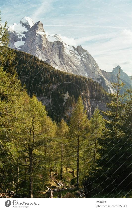 Dolomiten weiß grün blau Wald Schnee Berge u. Gebirge grau Felsen