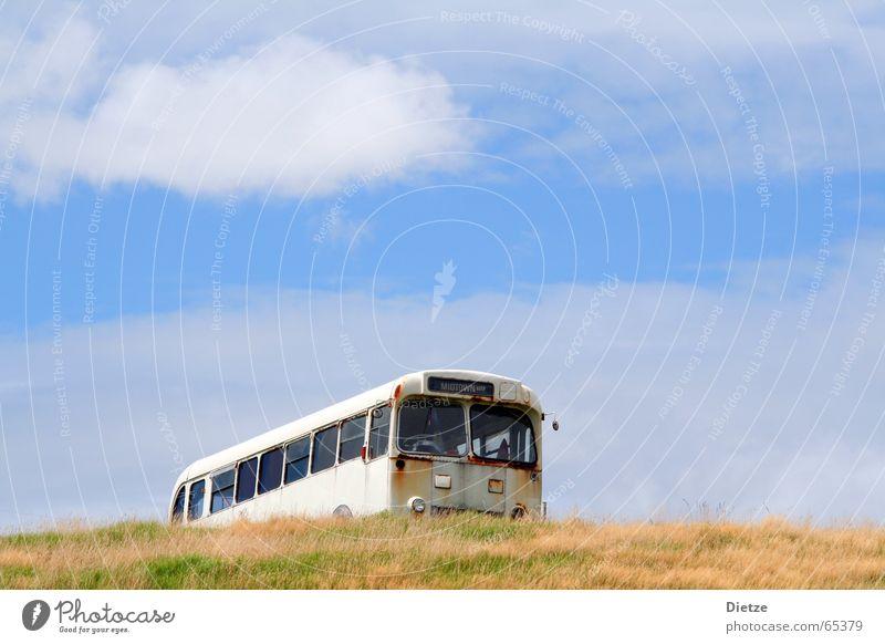 Midtown - Ride to nowhere Bus Oldtimer Neuseeland Autowrack Gras Sommer Roadmovie Vergänglichkeit grün gelb Himmel blau leer Vor hellem Hintergrund