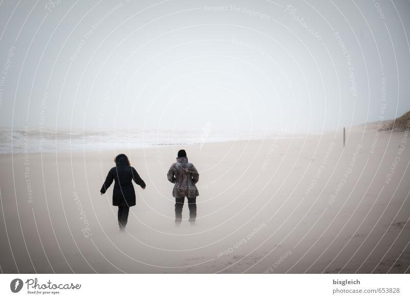 Sylt XI Mensch Himmel Natur blau Meer Landschaft Winter Strand Umwelt Sand braun Deutschland laufen wandern Europa Insel