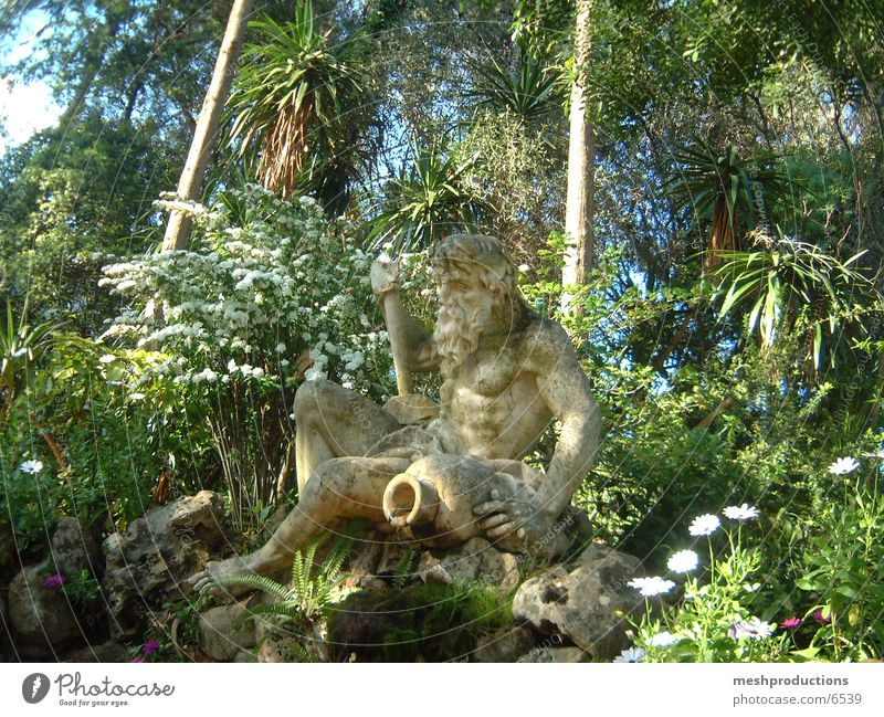 The source Natur plants mythology