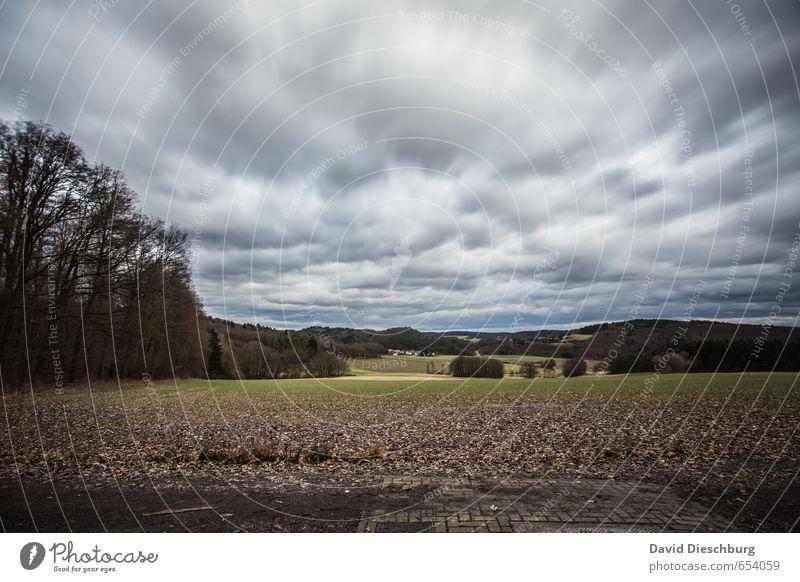 Stormy days Natur Landschaft Wolken Horizont Frühling Herbst Winter schlechtes Wetter Wind Sturm Pflanze Baum Nutzpflanze Feld Wald blau braun gelb grün schwarz