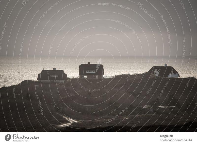 Sylt V Ferien & Urlaub & Reisen Meer Insel Wasser Himmel Nordsee Deutschland Europa Dorf Haus Einfamilienhaus braun grau Ferne Sehnsucht Horizont Farbfoto