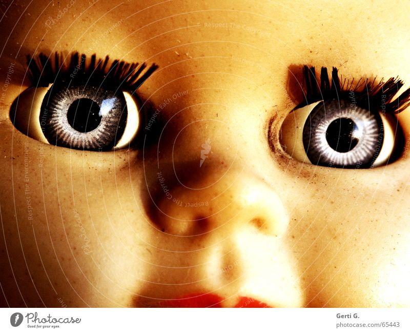 Portrait Augen, Nase, Mund einer über 50 Jahre alten Puppe Puppenauge Knopfauge antik Spielzeug unschuldig strahlend glänzend Wimpern Wimperntusche Silberblick