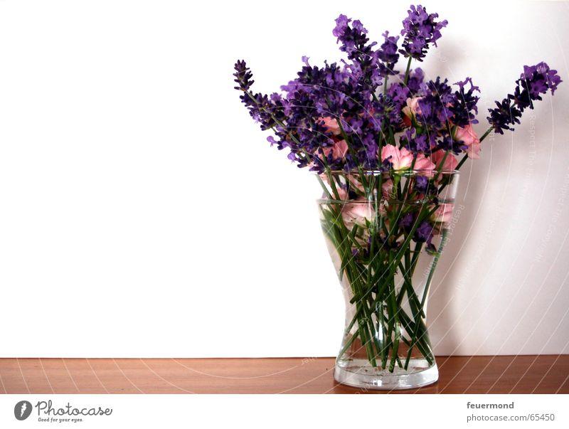 sweet little posy Blumenstrauß Blüte Lavendel Rose Vase Wand Frühling Sommer Glückwünsche Glas regalbrett bloom Mauer Heilpflanzen