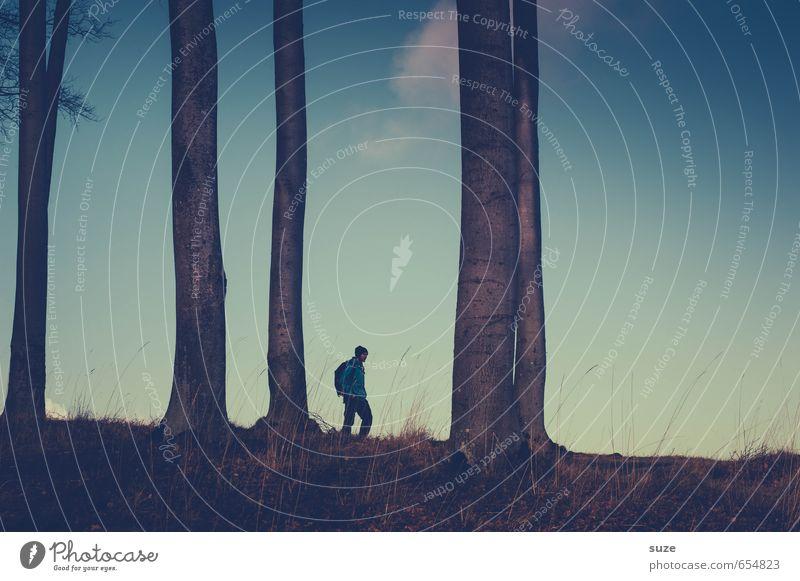 Vergehen und Werden Mensch Himmel Jugendliche Mann blau Baum Einsamkeit ruhig Junger Mann dunkel Erwachsene Küste Freiheit Stimmung Horizont
