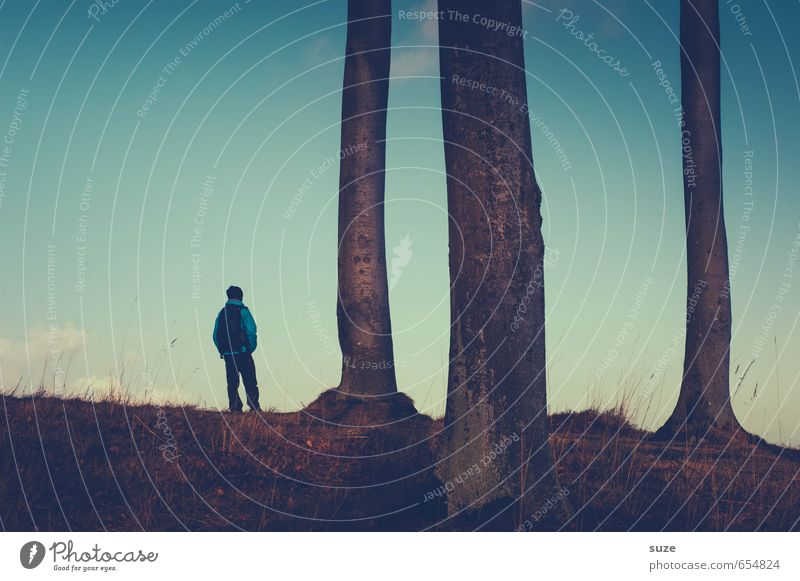 Sehen und Sein Mensch Himmel Jugendliche Mann blau Baum Meer Einsamkeit ruhig 18-30 Jahre Junger Mann dunkel Erwachsene Küste Freiheit Stimmung