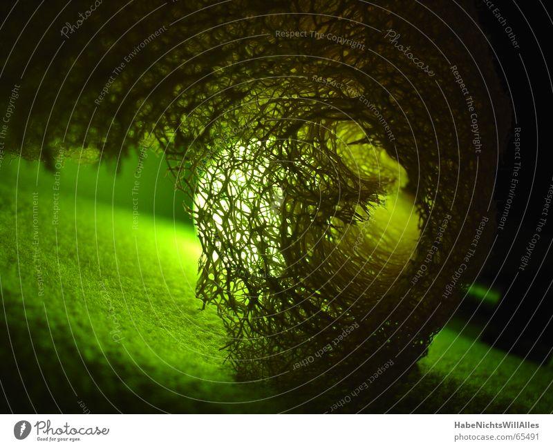 Grünlich-t grün Licht Filz Verflechtung Vernetzung Beleuchtung Low Key Strukturen & Formen durchlicht