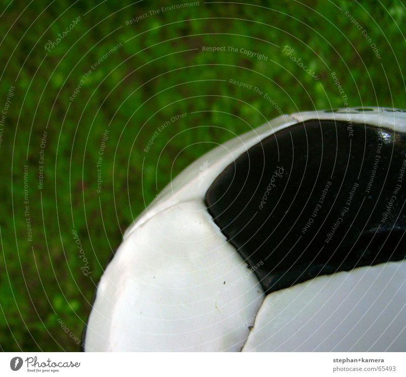 // Ballaballa grün Sommer Freude schwarz Sport Wiese Spielen Glück Fußball Hoffnung Ball Rasen Tor Pokal Weltmeisterschaft Naht