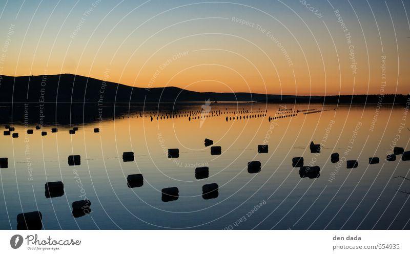 Muschelfarm im Sonnenuntergang Angeln Ferien & Urlaub & Reisen Tourismus Ausflug Ferne Sommer Sommerurlaub Meer Insel Natur Schönes Wetter Küste Bucht Fjord