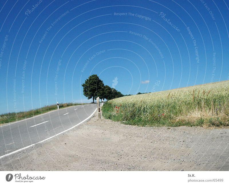 Highway Baum Feld Wolken Weizen Himmel blau Straße Luxemburg Schilder & Markierungen dreckig Getreide Kies