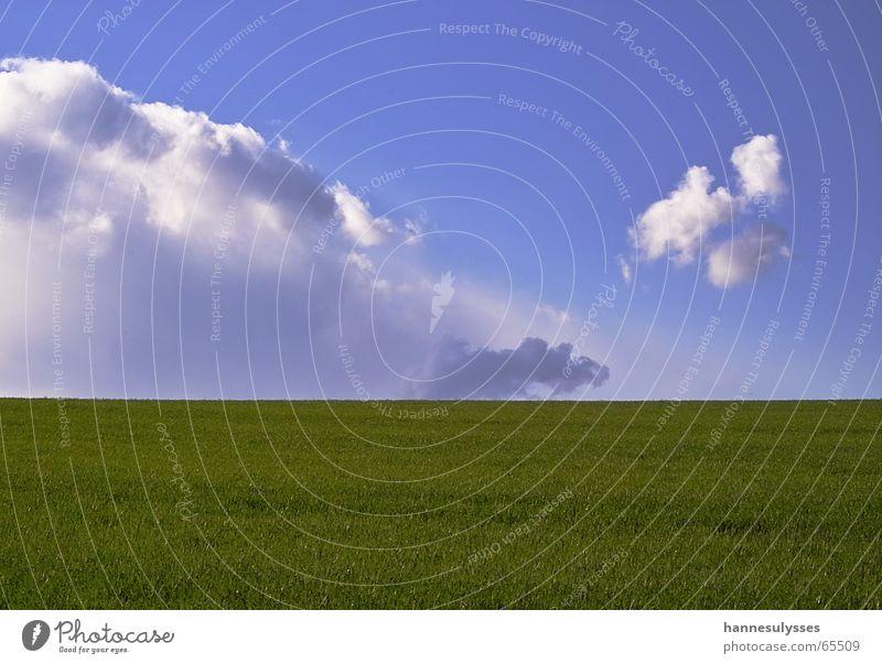 weite 02 Himmel grün blau Wolken Wiese Frühling