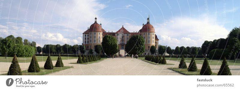 Schloß Moritzburg grün blau Sommer Park Dresden Landschaft Burg oder Schloss Sachsen Jagdschloss Moritzburg