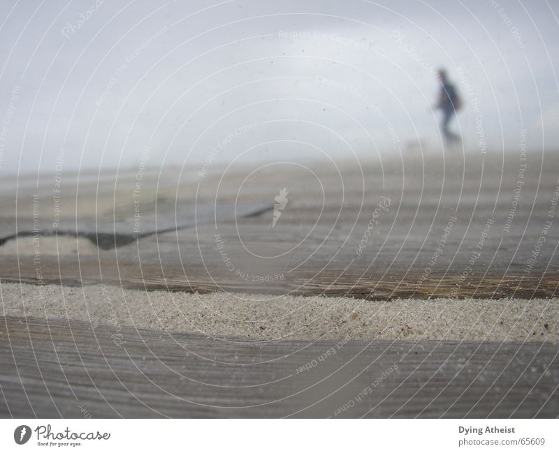 Strand Holz Sand Nebel Wind unsicher Holzmehl