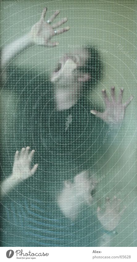 lass uns rein, wir sinds bloß Mensch Mann Jugendliche Freude Tod Fenster 2 Tür Glas Mund Angst Nebel verrückt Sicherheit Netz gruselig