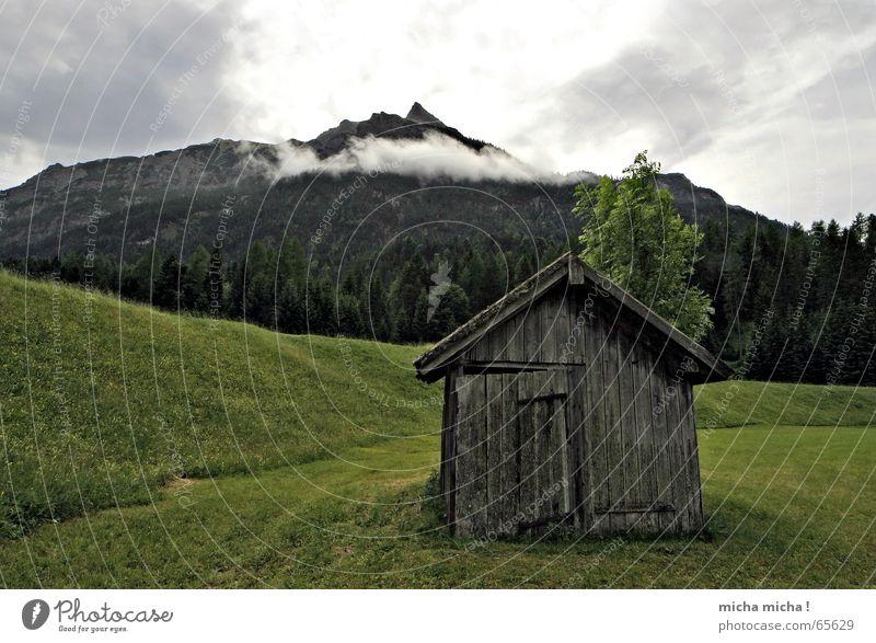 Die Hütte Wiese Bundesland Tirol Wolken Nebel Wald Baum ruhig Berge u. Gebirge Wetter
