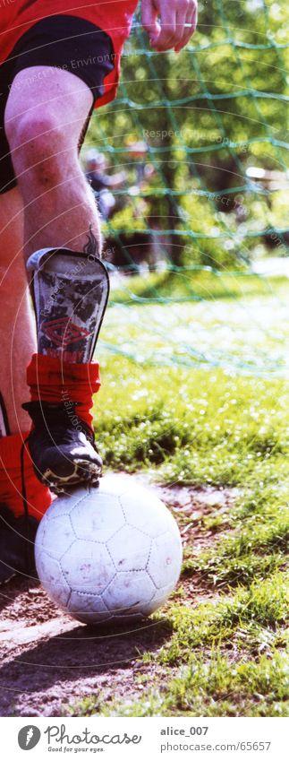 starke beine weiß rot grün Knieschoner Stulpe Fußballschuhe Schuhe Beine Ball Sport alice Rasen amateurfußball Schönes Wetter Freude Netz