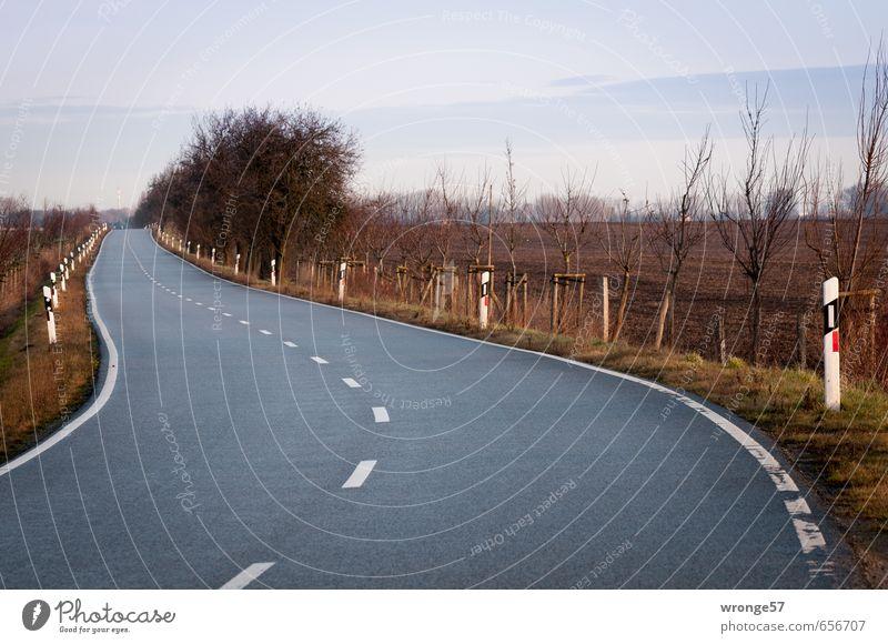 Krümmung einer Kurve Verkehrswege Straßenverkehr Landstraße Kreisstraße braun grau schwarz Straßenrand Straßenbelag Straßenbegrenzung Asphalt Leitpfosten
