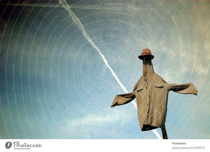 Vogelscheuche alt Himmel weiß blau Wolken braun Schutz Jacke Hut Knöpfe Vogelscheuche