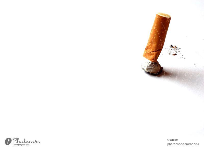 Kippe Gesundheitswesen Rauchen authentisch gelb gold weiß Laster Zigarette beenden Gift ausgedrückt Farbfoto Innenaufnahme Studioaufnahme Nahaufnahme