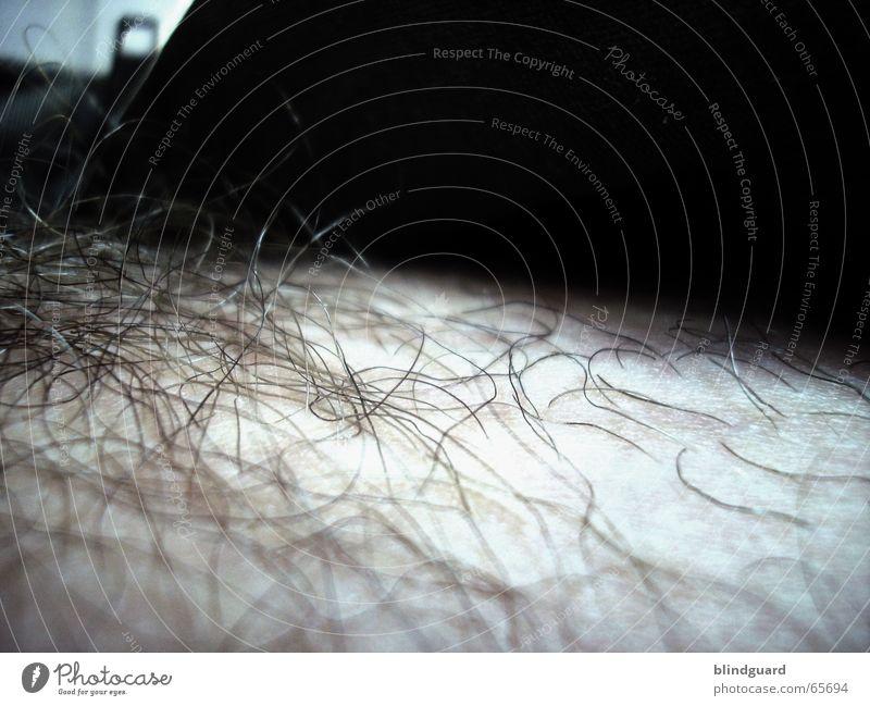 Dirty Hairy unrasiert Hose Hemd Jacke Reißverschluss igitt fantastisch Meinung Kunstlicht Rasieren Schamhaare normal Leiche Einblick provokant bleich Intimität
