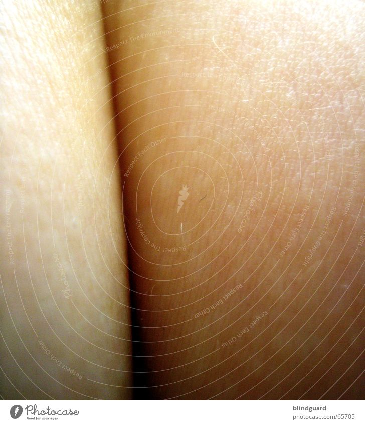 Visual Lies nackt Haare & Frisuren Haut Falte zart berühren wie Furche Spalte wo sensibel Schlitz Fragen wann