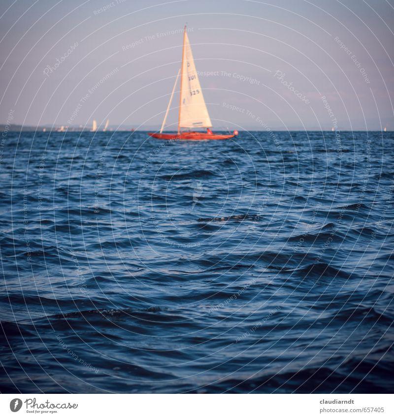 Schiff, Ahoi! Natur Wasser Himmel Wolkenloser Himmel Sommer Schönes Wetter See Bodensee Bootsfahrt Segelboot blau Wellen Wasseroberfläche Segeln Meer Horizont