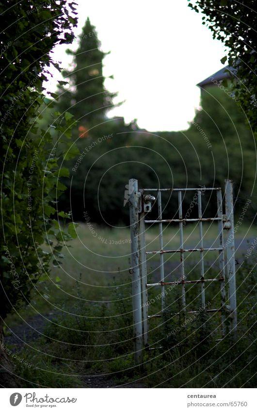 Gartentür Tor Hölle weiß Dämmerung flüchten Flüchtlinge Einsamkeit Justizvollzugsanstalt gefangen Tür Abend