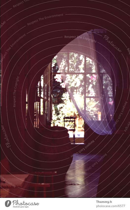 Privatsphäre Hauseingang Wohnzimmer Gardine Vase Tonkrug Pflanze Raum Fenster Europa Rhodos Stadt