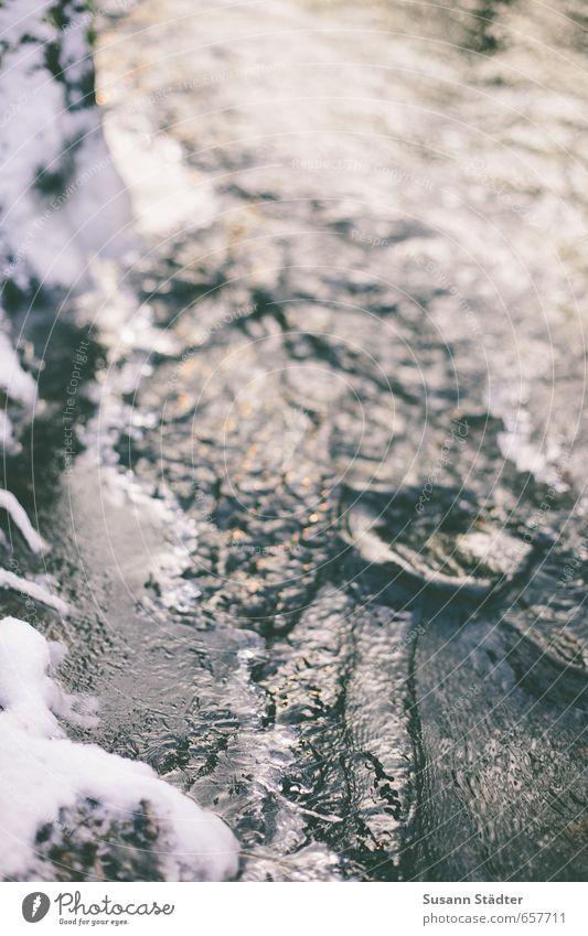 eisbach Wasser Eis Frost Schnee Flüssigkeit kalt Bach Fluss Winter schneekante Aggregatzustand Wellen Gedeckte Farben Nahaufnahme Dämmerung